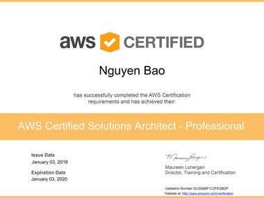 AWS Certified Solutions Architect - Associate (English)
