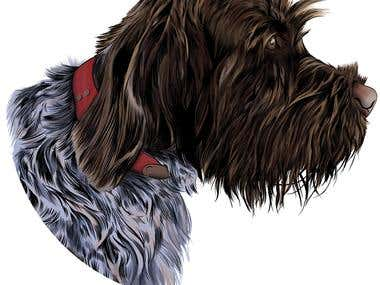 Ilustration Dog Pet