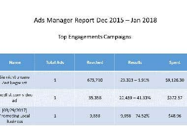 Facebook Advertising Report