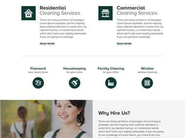 Cleaning Services Website Concept