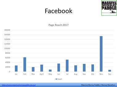 Facebook page annual report