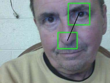 Facial Feature Detection.