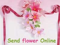 An E-commerce store for flowers