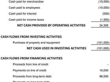 flow cash statement