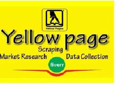 Yp/Yellow Page Data Collection