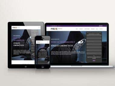Mexis / Website Design and Development