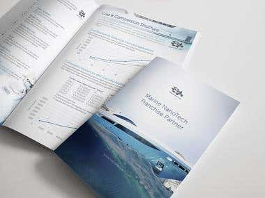 B2B Brochure is explaining Franchise System. + Process