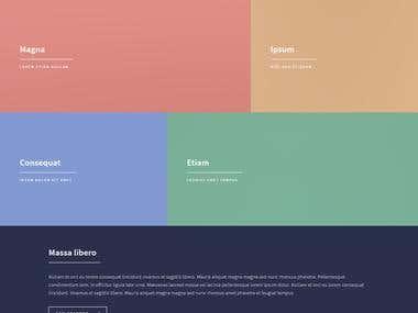 Content Website/ Personal Website /