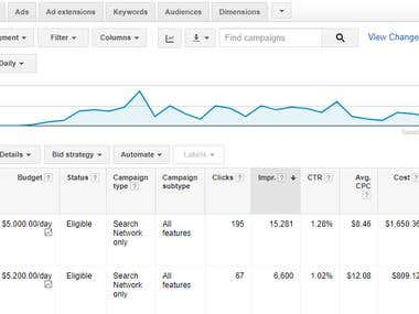 Adwords Pay Per Click Manager - Expert Level