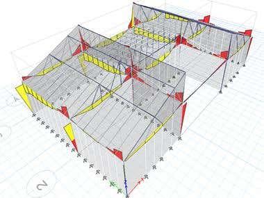 Steel House design example