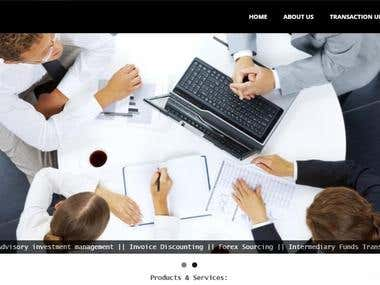 Financial Company Website