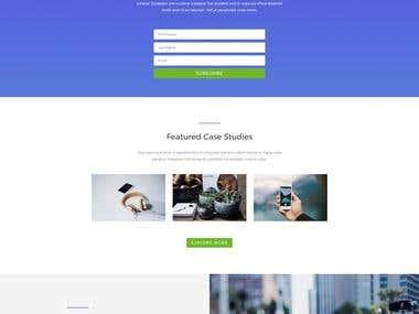 Website WordPress design and UIX design