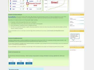 Website for Big 4