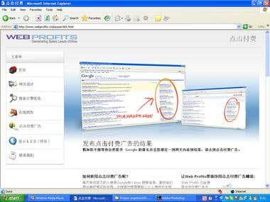 www.webprofits.cn_transations_project
