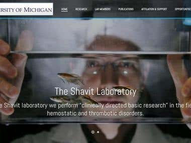 Shavit Lab