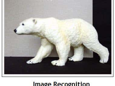 Image Recognition.