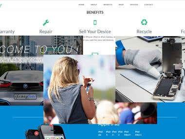 Senior Web site development of company and Repair