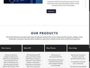 website design for software company