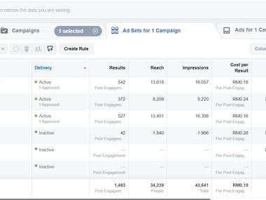 Social Media Marketing (Facebook)