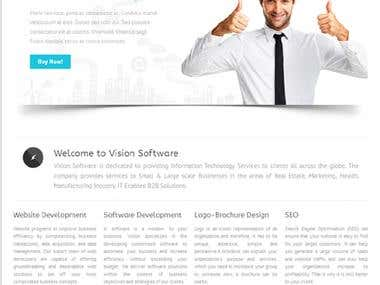 VISION SOFTWARE SOLUTION