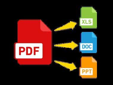 PDF to Any MS Office format