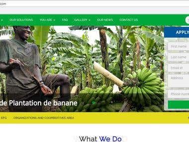 Financial Organisation Website With Huge Functionalities