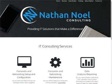 Nathan Noel Personal Website