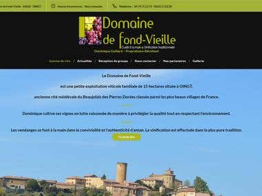Website for french winegrower
