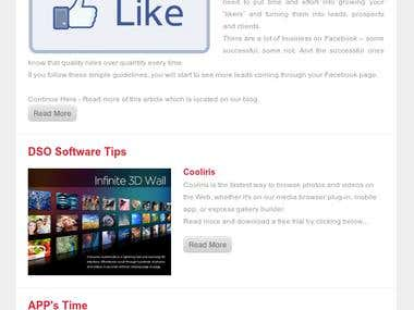 Direct sites Online Newsletter Template