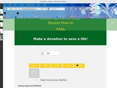 Donation page for Non-Profit Orginization