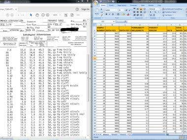 Bulk PDF to Excel Conversion|Data Entry