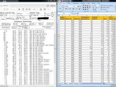 Bulk PDF to Excel Conversion|Data Entry