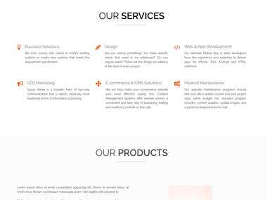 ItegrityPro Company website design & development