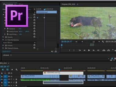 Adobe Premier Pro 2