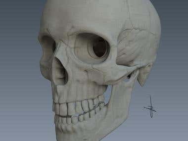 Sculpted for 3d printing