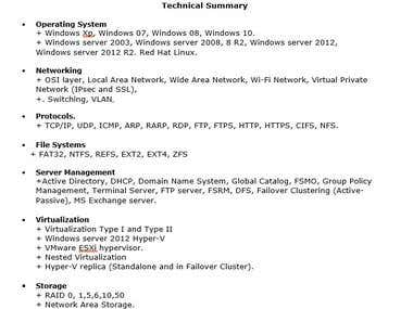 Windows System Administrator