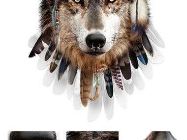 Wolf DJ