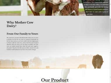 Mother Cow Dairy