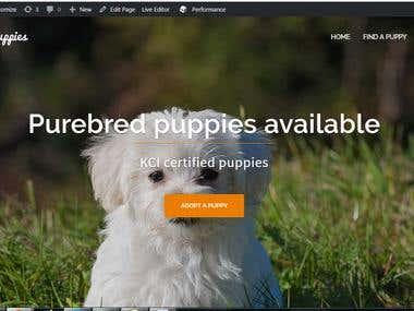 Online Puppies