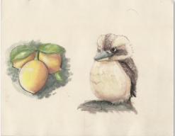 Concept art of a Lemon and Bird