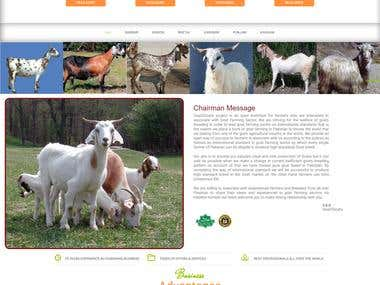 Goat Farming In Pakistan