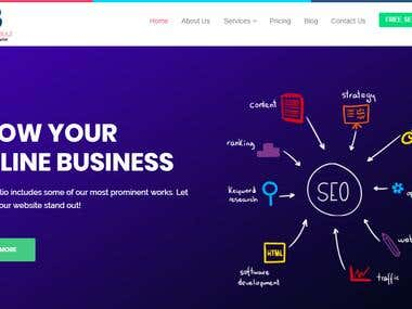 Marketing Company Website