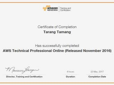 AWS Technical Professional Online