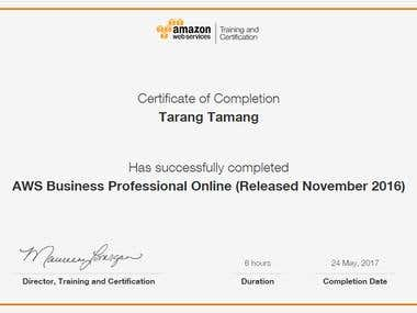 AWS Business Professional Online