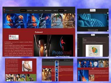 Laravel & wordpress (http://protocoxil.com/)