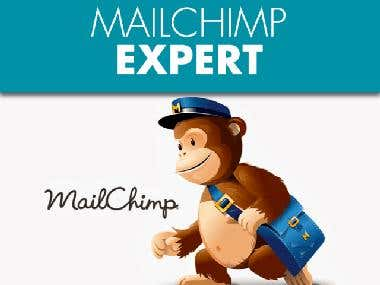 Email Marketing Campaign By Mailchimp