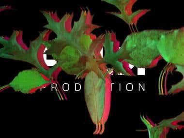 FEELM logo presentation