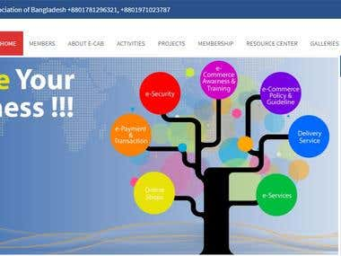Official/Organization Website