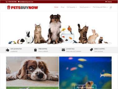 build website and fix bug