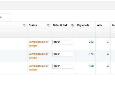 Successful Amazon PPC Campaign